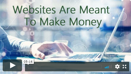websites are meant to make money